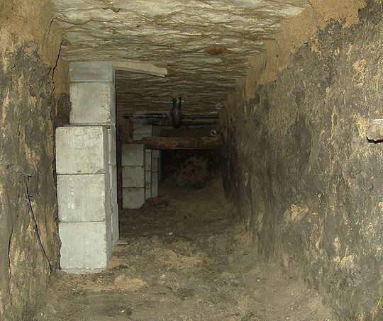Crawlspace Excavation